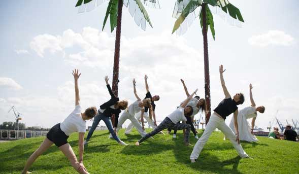 yogafa
